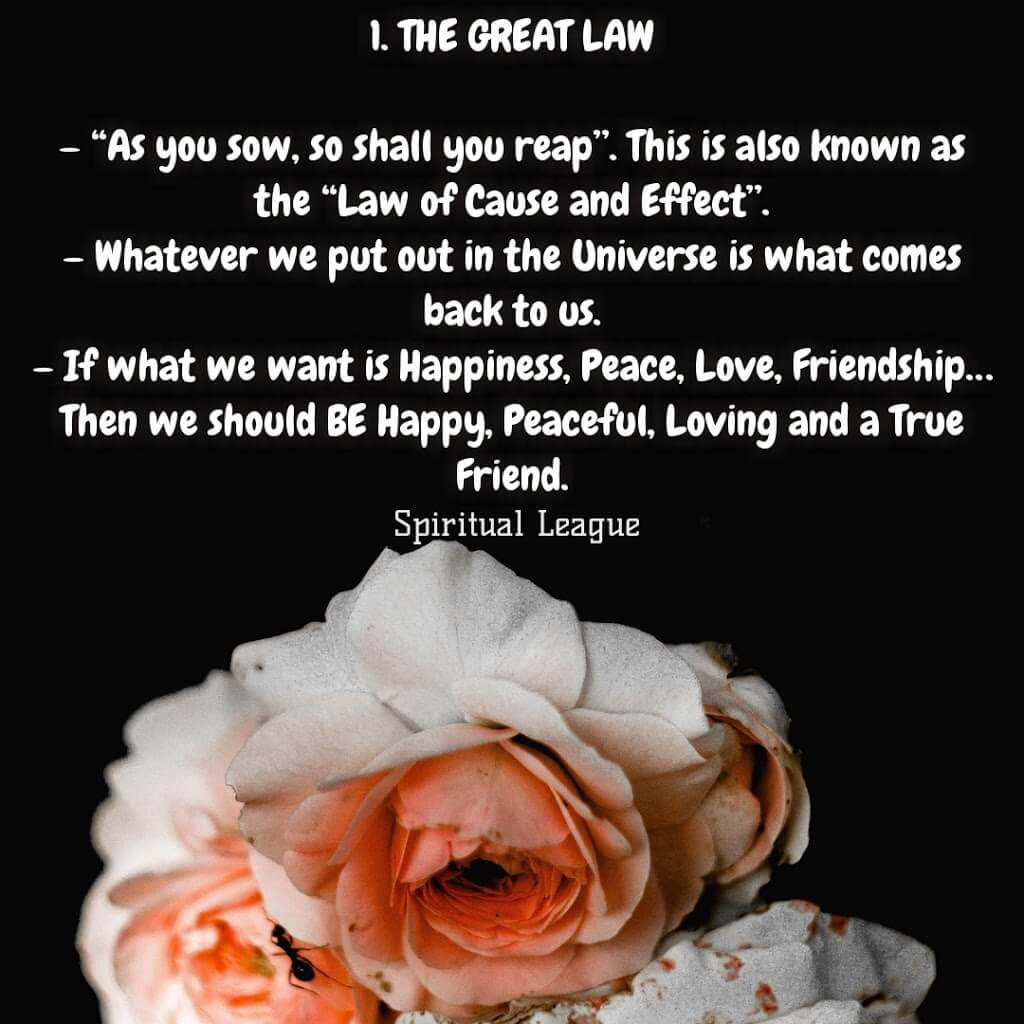 12 laws of karma  the great law