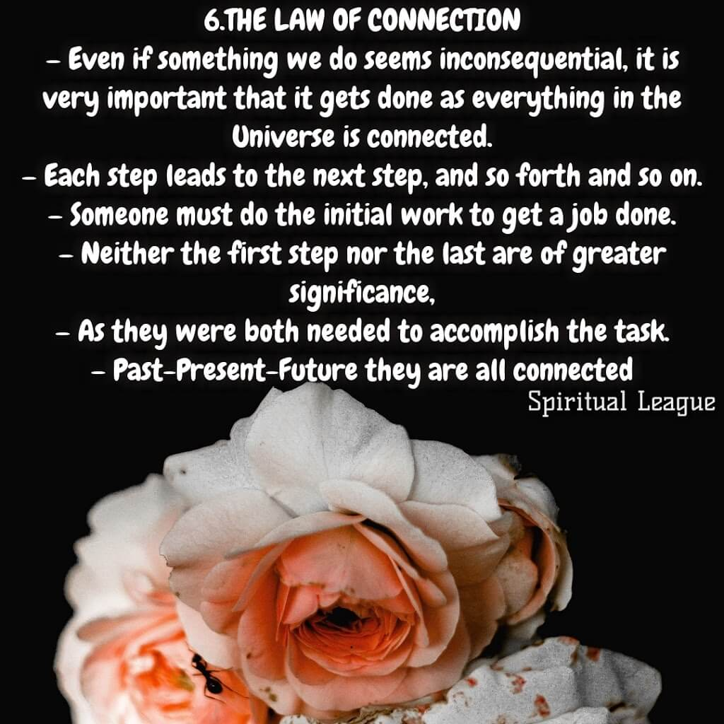 12 laws of karma  the law of connection