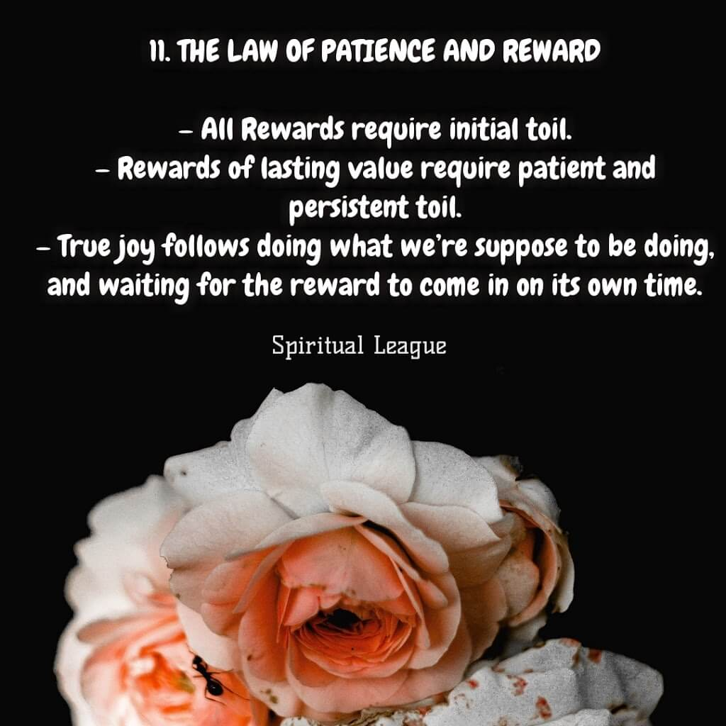 12 laws of karma  the law of practice and reward