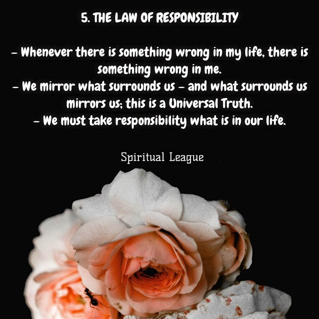 12 laws of karma  the law of responsiblity