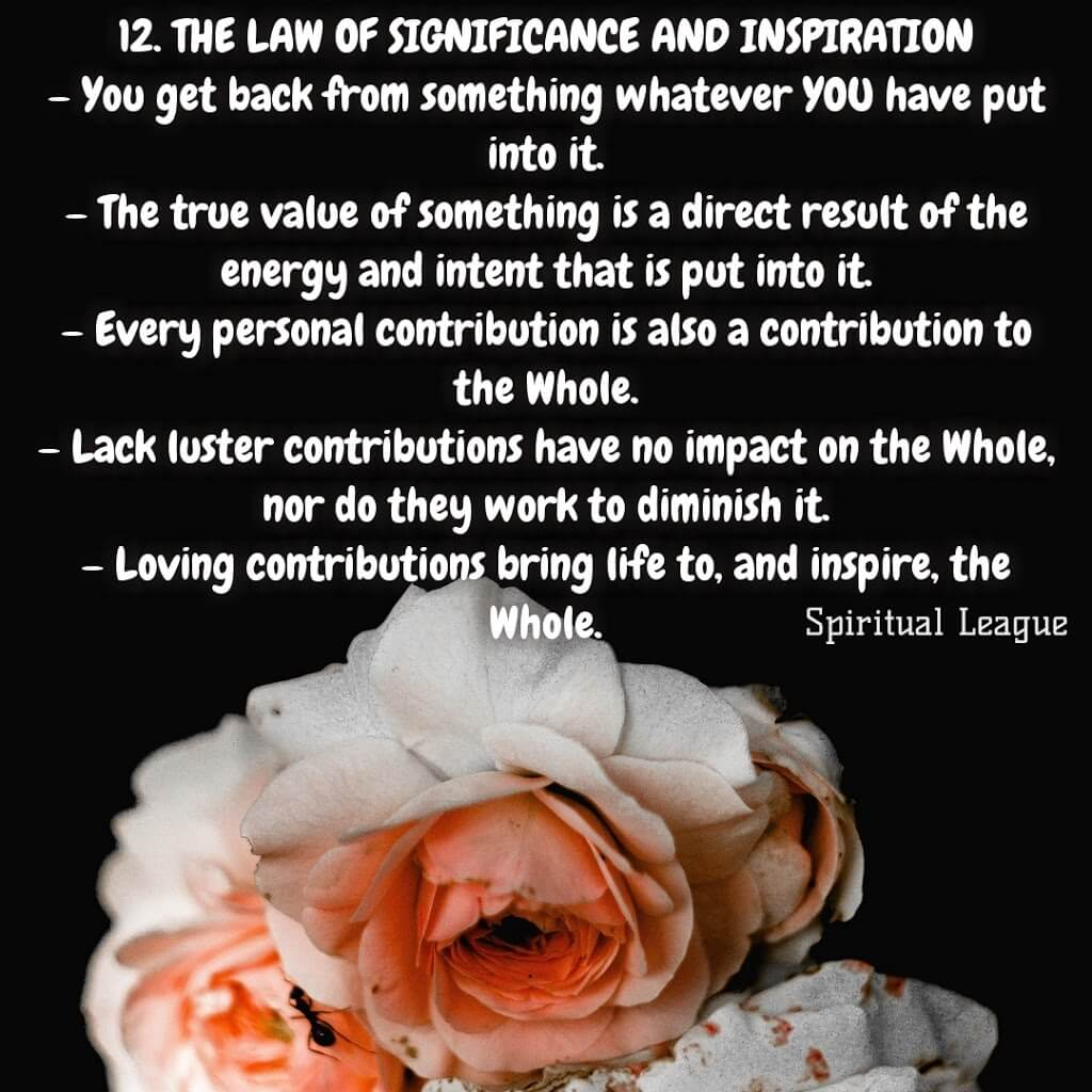 12 laws of karma  the law of significance and reward